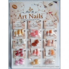 ART NAILS - UNGHII FALSE FRENCH MANECHIURE